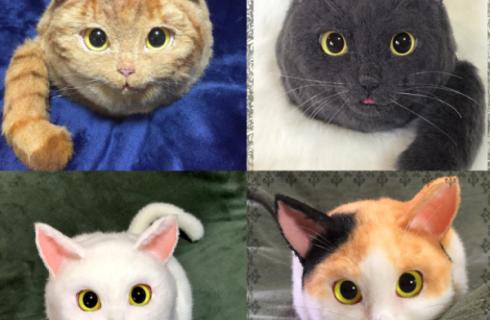Trào lưu túi xách mèo cực xinh cho các quý cô